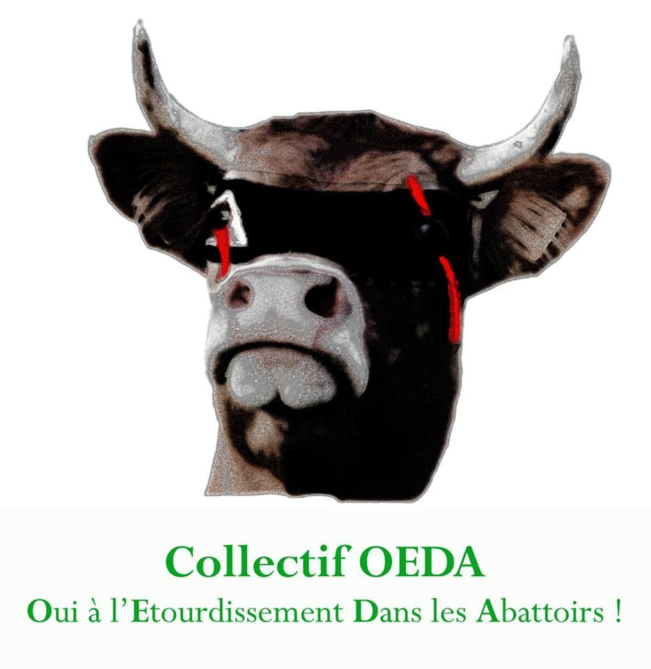 Collectif OEDA