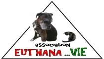 Pour la mise en place d'une charte règlementant les décisions d'euthanasies dans les refuges animaliers