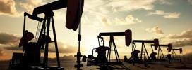 Pétition : Ensemble contre le monopole des grands groupes pétroliers !