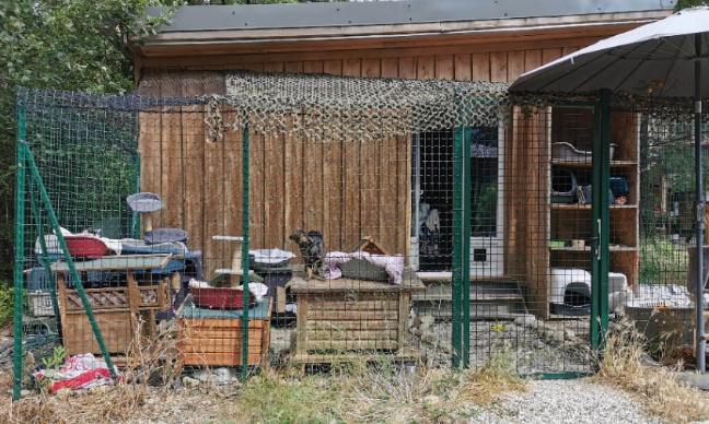 Création d'urgence d'un refuge supplémentaire pour animaux dans les Alpes Maritimes.
