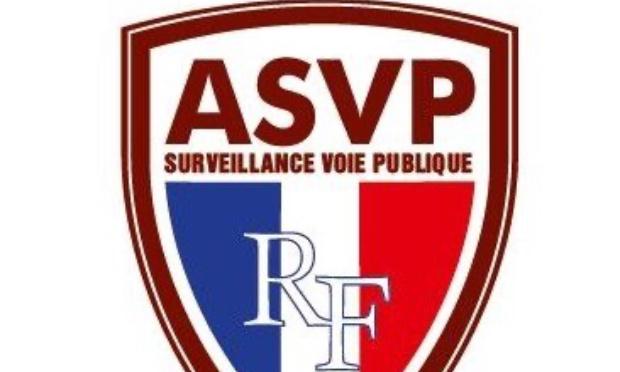 Armement des agents de surveillance de la voie publique