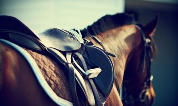 Pour que le cheval garde son statut agricole