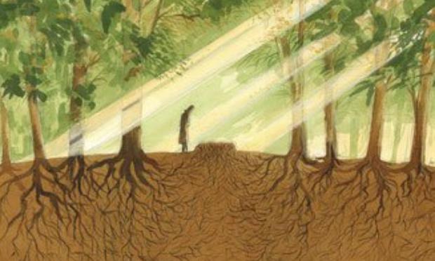 Pétition : Impact écologique de nos pratiques funéraires : Légalisons l'humusation !