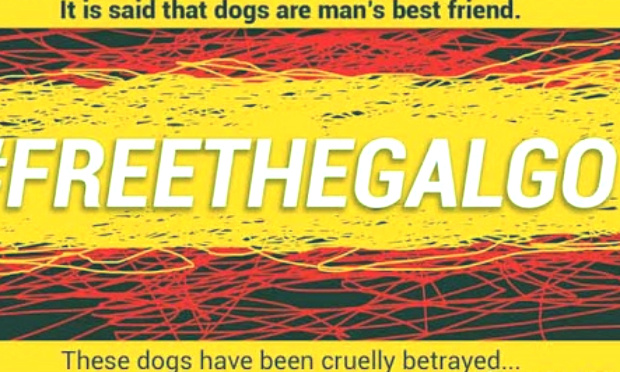 Pétition : L'Espagne, l'un des pires pays de l'UE en terme de cruauté animale/Spain is one of the worst countries in animal cruelty in E.U.