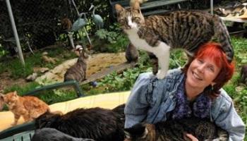 Pétition : Scandaleux : Tomi TOMEK lutte contre la fourrure de chat et elle risque la prison