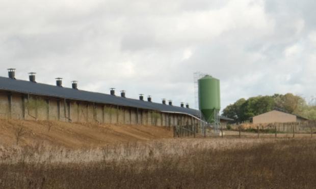 Refus d'implantation d'un cinquième poulailler bio industriel sur la commune de Saint-Martin-des-Bois (41)