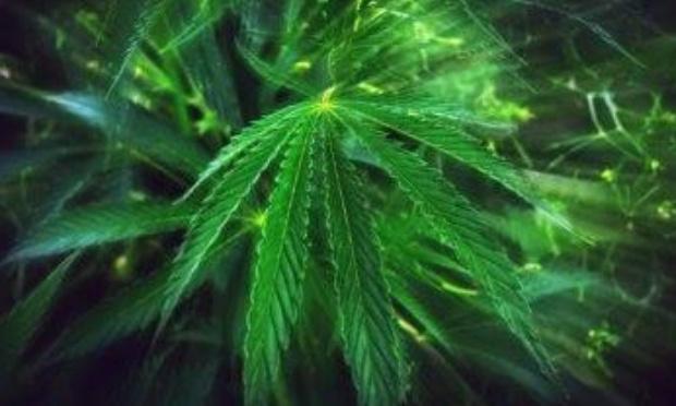 légalisation de toutes les drogues