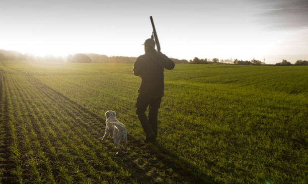 Abolir la chasse à courre et la chasse tout court !