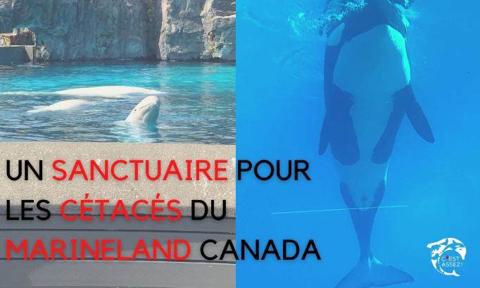 UN SANCTUAIRE POUR KISKA ET SES COMPAGNONS D'INFORTUNE DU MARINELAND CANADA !