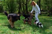 Laissez ouverte la Pension Refuge de Foncabrette de Mme Patricia Lagrange à Draguignan (83)