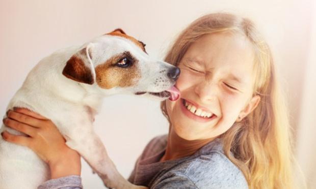 Pour que les enfants sans famille puissent visiter des refuges pour animaux