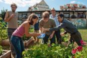 Pétition : Plaidoyer en faveur des jardins partagés en vue des élections de mars 2014