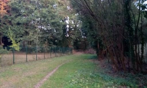 Entretien de la forêt de Longuenée