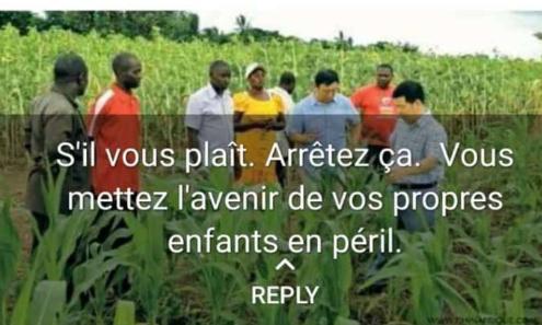 Pétition : # arrêt de vente de terre Agricole du Togo aux étrangers