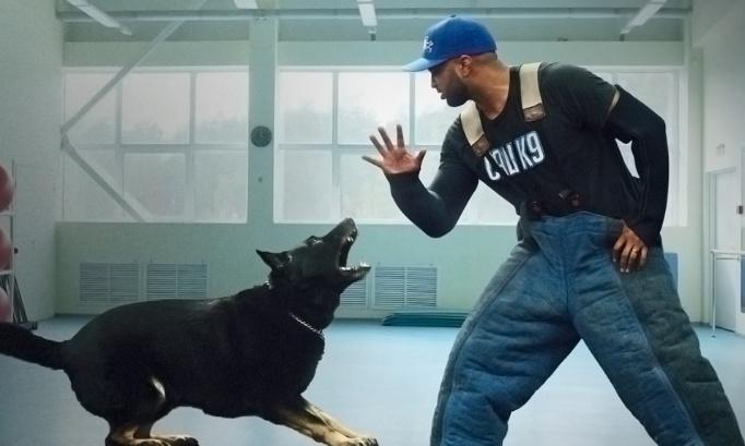 Netflix encourage la maltraitance du chien : dîtes stop !