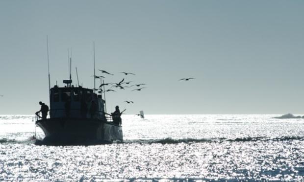 Autoriser les activités de pêche plaisance en mer