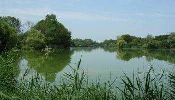 Pétition : Pour des étangs, rivières et canaux propres !
