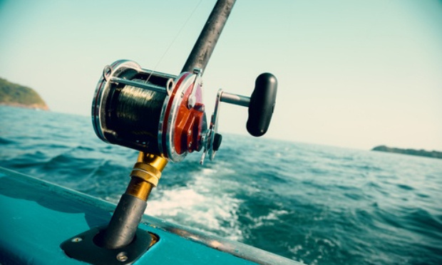 Pétition : Le monde halieutique en émoi