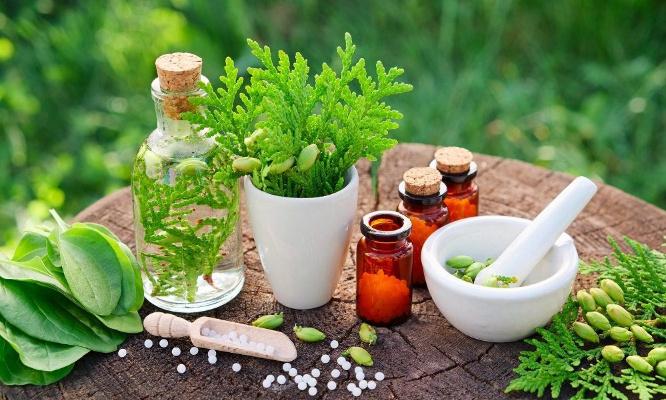 Normalisation de la médecine traditionnelle.