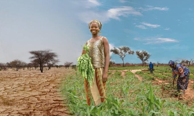 Agir aujourd'hui contre la désertification pour prévenir le pire demain.
