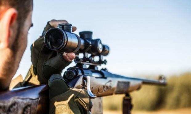 R.I.P : pour l'abolition de la chasse !