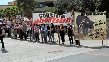 Pétition : Pour le droit de manifester contre les corridas !