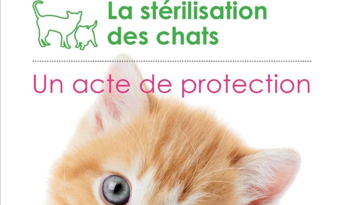 Que les campagnes de stérilisation soient réalisées