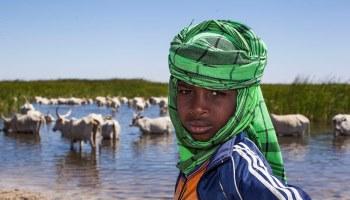 Pétition : Stop aux accaparements de terres au Sénégal !