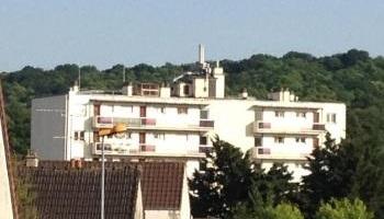 Pétition : Halte au massacre illégal des pigeons ordonné par la Mairie de Viroflay