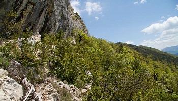 Pétition : Simplifions les différents types de classements de protection de la nature et des territoires !