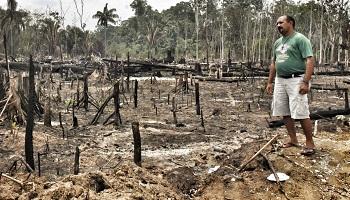 Pétition : Brésil : mettez un carton rouge au pillage des terres !
