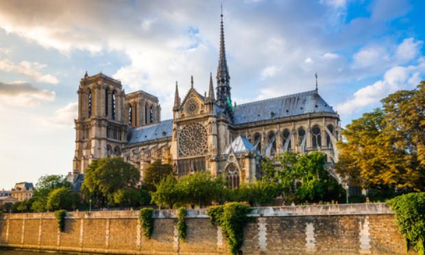 Pétition : Non à l'abattage de chênes centenaires pour la charpente de Notre Dame de Paris