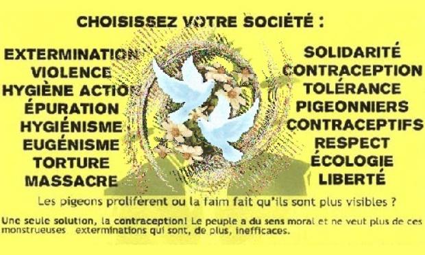 Arrêtez de tuer les pigeons de Guérande