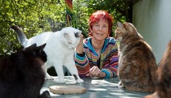 Pétition : Nous demandons une nouvelle loi contre le commerce et la consommation de viande de chiens et chats en Suisse