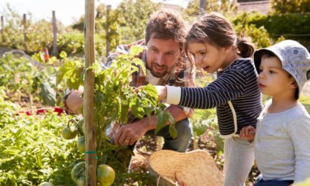 Soutien citoyen à une production alimentaire locale sur le territoire de Grand Lac / Projet Prés Nouveaux à Mouxy