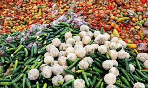 Respectons la loi sur le gaspillage alimentaire
