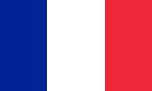 Réunion de la Haute cour en vue de destituer le président Macron pour cause de manquement à ses devoirs selon l'article 68 de la Constitution