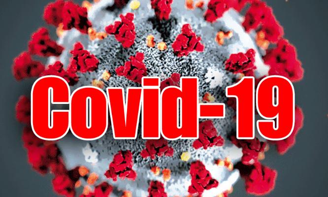 Un vaccin Covid pour tous
