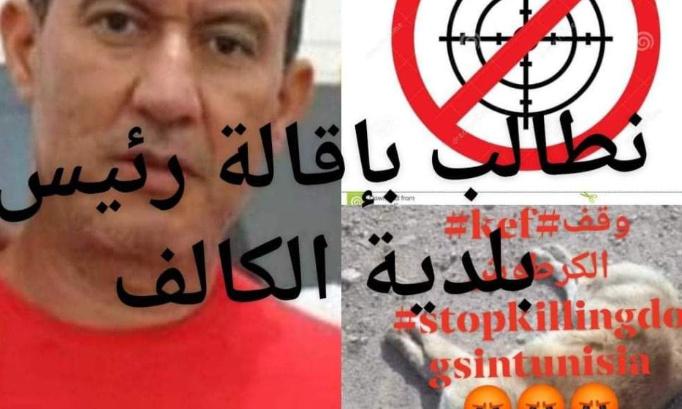 Nous exigeons la destitution du maire d'El Kef #Stop_Shipping