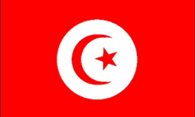 ÇA SUFFIT, LE PEUPLE TUNISIEN N'EN PEUT PLUS:UNE ACTION CITOYENNE MASSIVE ET PACIFIQUE EST LA SEULE ISSUE.
