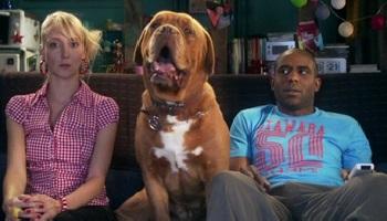 Pétition : Non aux animaux montrés comme des objets dans la série Scènes de Ménages !