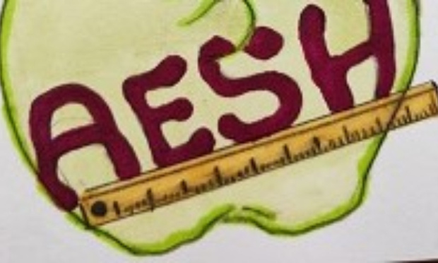 """AESH, un métier, un statut, une reconnaissance! Nous ne voulons plus être les """"bonnes poires"""" de l'Education Nationale!"""
