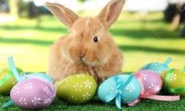 Ensemble, disons NON à l'annulation du repas de Pâques !!!