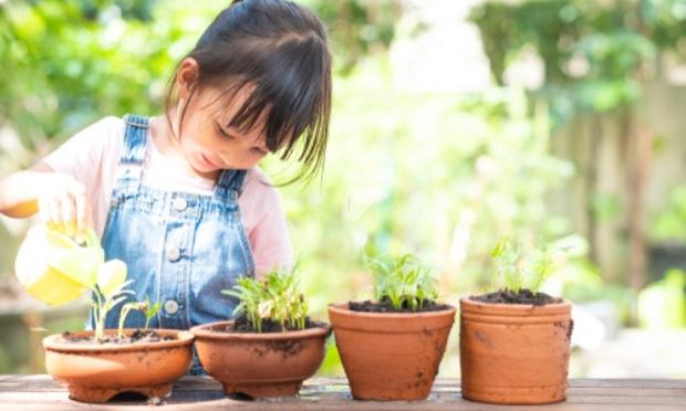 Mise en place de disciplines bien-être en primaire en lieu et place de l'anglais