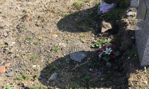 Pétition : Interdisons les carrés indigents pour les sans abris lors de leurs décès