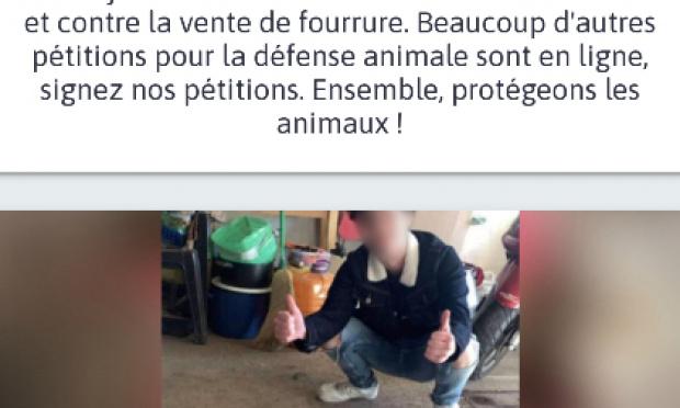 Justice pour le mouton innocent torturé et tué samedi 27 mars dans le Jura