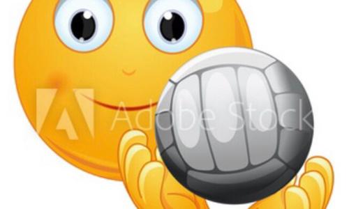 Demande d'insertion de l'emoji pétanque