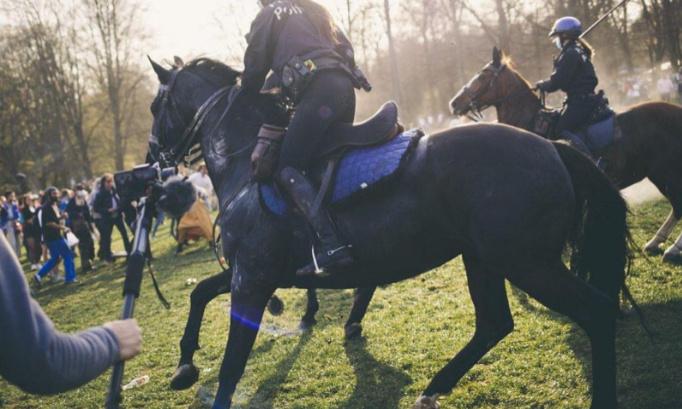 Pétition : Stop à l'utilisation de chiens et de chevaux par les forces de l'ordre