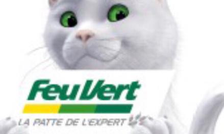 Le chat de feu vert doit rester