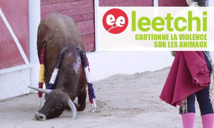LEETCHI : Pour l'interdiction des cagnottes en lien avec la cruauté sur les animaux